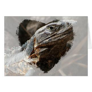 Iguana Checking You Out Card