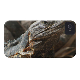 Iguana Checking You Out Case-Mate iPhone 4 Cases