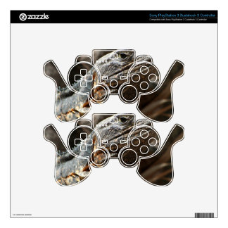 Iguana Checking You Out Decal For PS3 Controller