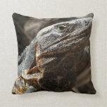 Iguana Checking You Out Pillow