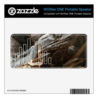 Iguana Checking You Out WOWee Speaker Decals