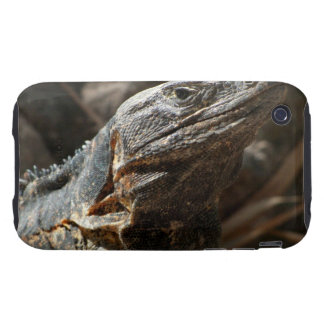 Iguana Checking You Out Tough iPhone 3 Case