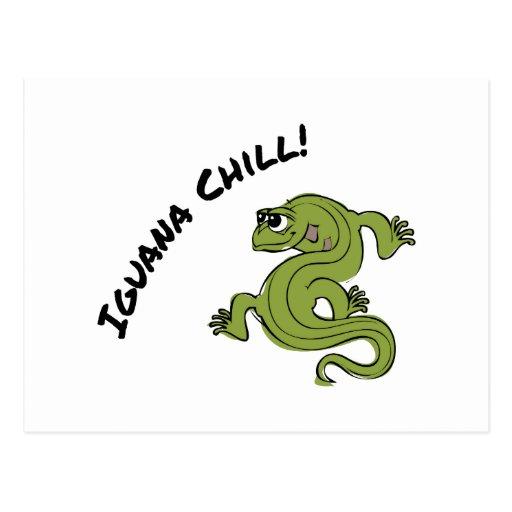 Iguana Chill Post Card
