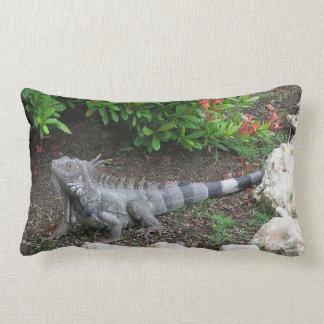 iguana almohadas