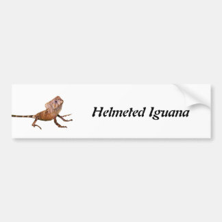 Iguana con casco etiqueta de parachoque