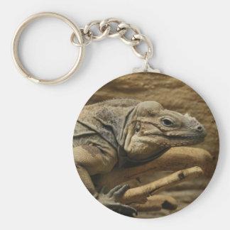 Iguana cubana llavero redondo tipo pin