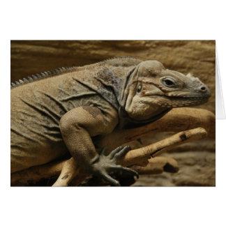 Iguana cubana tarjeta de felicitación