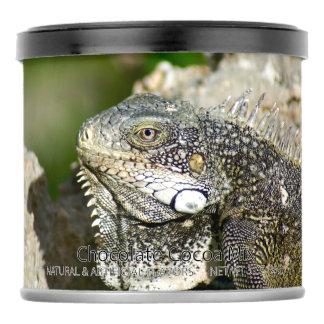 Iguana, Curacao, Caribbean islands, Photo Hot Chocolate Drink Mix