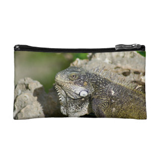 Iguana, Curacao, Caribbean islands, Photo Makeup Bag