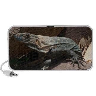 Iguana curiosa portátil altavoz