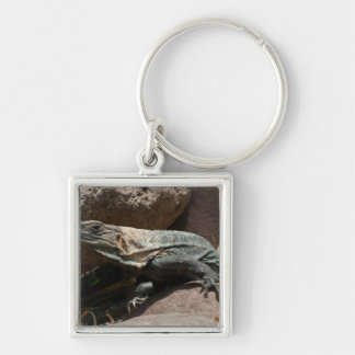 Iguana curiosa llavero cuadrado plateado