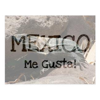 Iguana curiosa; Recuerdo de México Postales