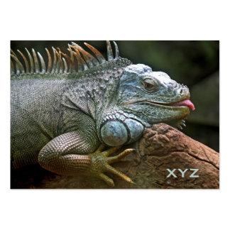 Iguana custom business cards