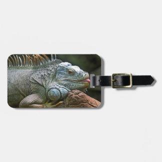 Iguana custom luggage tag