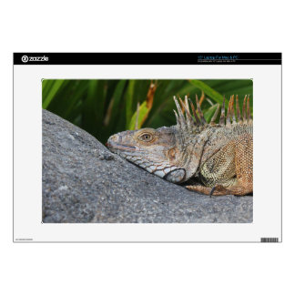 "Iguana Custom Skin 15"" Laptop Decal"
