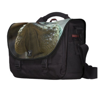 Iguana de Gran Caimán Bolsa Para Ordenador