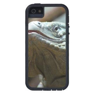 Iguana de Gran Caimán iPhone 5 Case-Mate Protectores