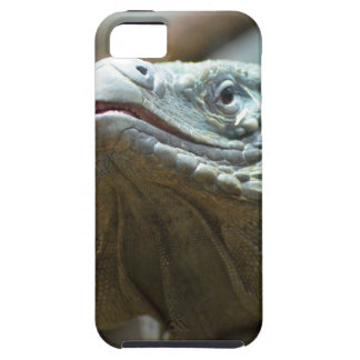 Iguana de Gran Caimán iPhone 5 Case-Mate Carcasa