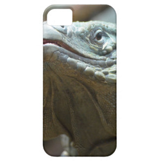 Iguana de Gran Caimán iPhone 5 Carcasa