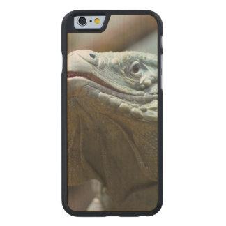 Iguana de Gran Caimán Funda De iPhone 6 Carved® De Arce