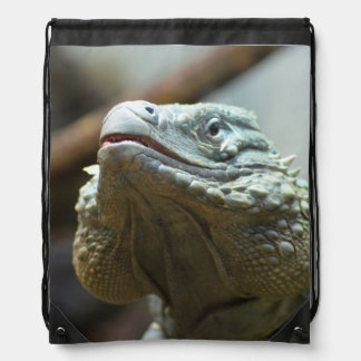 Iguana de Gran Caimán Mochila