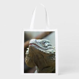 Iguana de Gran Caimán Bolsas De La Compra