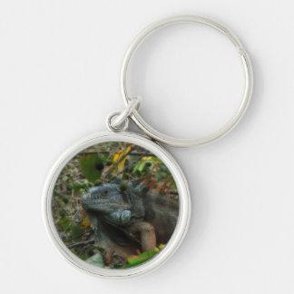 Iguana de la selva llavero redondo plateado