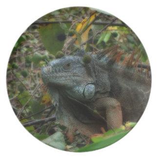 Iguana de la selva plato para fiesta