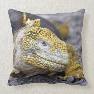Iguana de la tierra almohadas