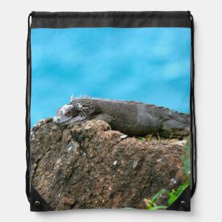 Iguana de mirada agradable de St Thomas U.S.V.I Mochila