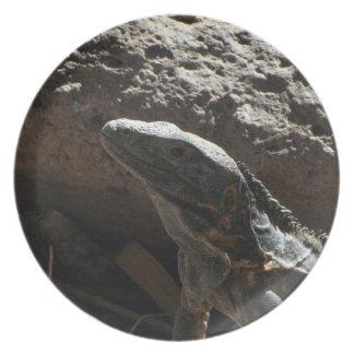 Iguana de punta platos de comidas