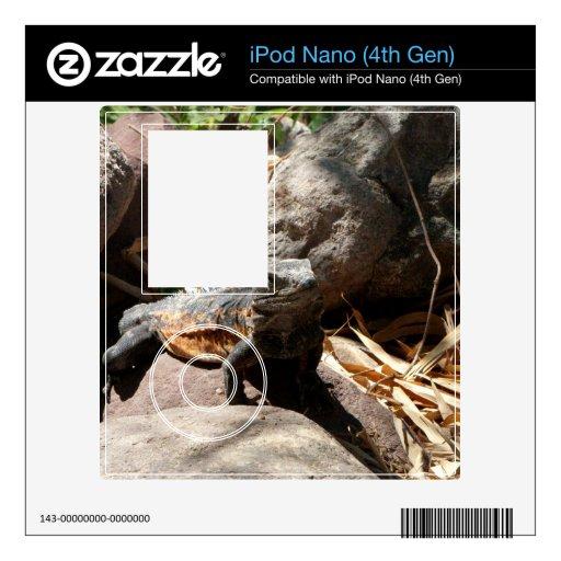 Iguana disimulada calcomanía para iPod nano