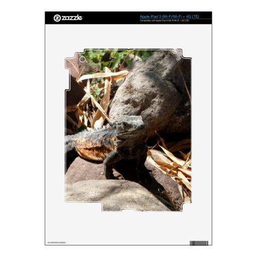 Iguana disimulada iPad 3 pegatinas skins