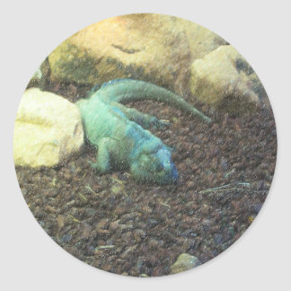 Iguana Dracon Classic Round Sticker