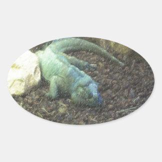 Iguana Dracon Oval Sticker