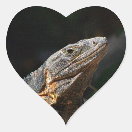 Iguana en el Sun Calcomania Corazon Personalizadas