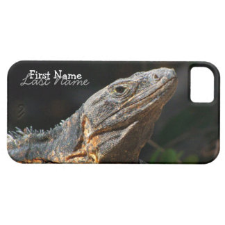 Iguana en el Sun iPhone 5 Fundas