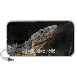 Iguana en el Sun; Personalizable iPhone Altavoz