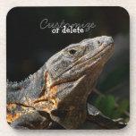 Iguana en el Sun; Personalizable Posavasos De Bebida