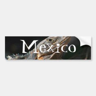 Iguana en el Sun Recuerdo de México Etiqueta De Parachoque