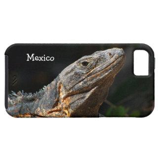 Iguana en el Sun; Recuerdo de México iPhone 5 Carcasa