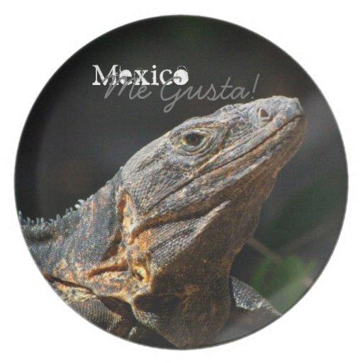 Iguana en el Sun; Recuerdo de México Plato De Comida