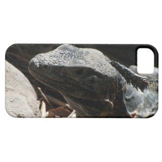 Iguana en las sombras iPhone 5 fundas