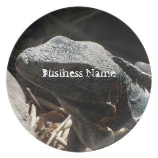 Iguana en las sombras platos