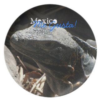 Iguana en las sombras; Recuerdo de México Plato De Cena
