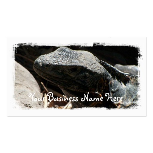 Iguana en las sombras tarjetas de visita