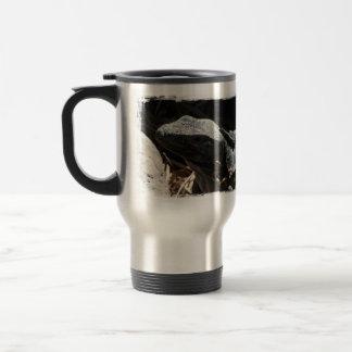 Iguana en las sombras tazas de café
