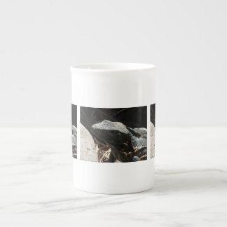 Iguana en las sombras tazas de porcelana