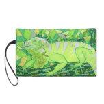 Iguana exótica