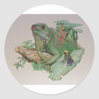 Iguana/Frog looking on Stickers
